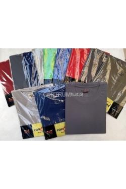 Koszulka męska krótki rękaw (M-3XL) FORMAX KOLOR 1
